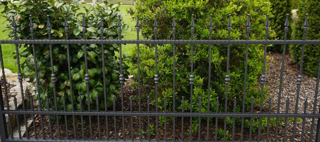 Zaun Titelbild 2