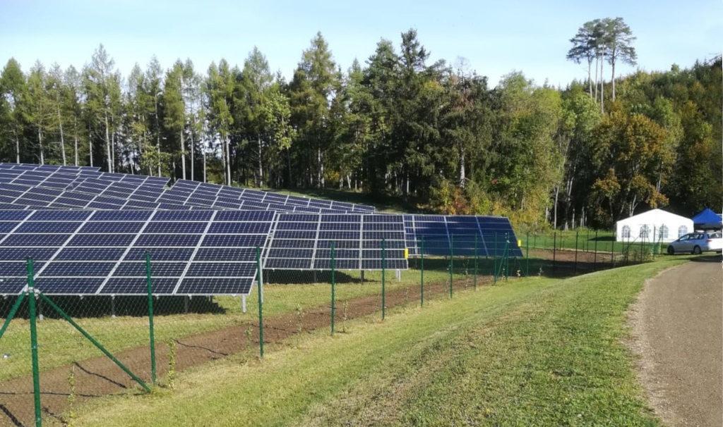 Eingrünung Solarpark Leibertingen