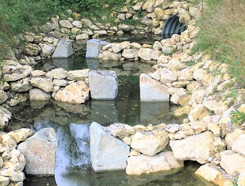 Eine Fischtreppe als ökologisch wertvolle Maßnahme